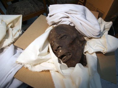 A proposito di Museo Egizio